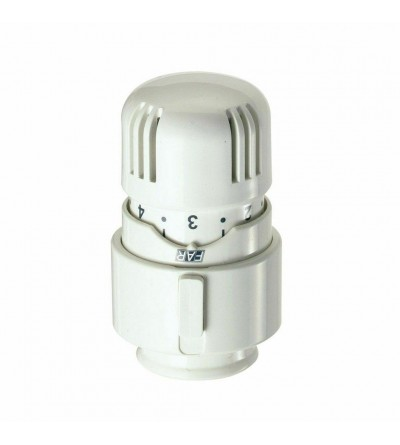 Thermostatic head for thermostatic valves Far 1824