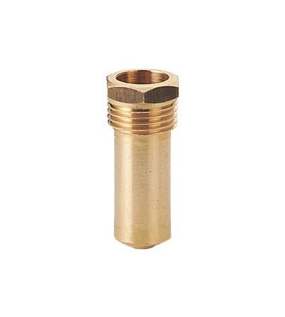 Pozzetto per l'alloggiamento del termometro campione INAIL Giacomini R227