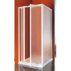Shower door with two hinged...